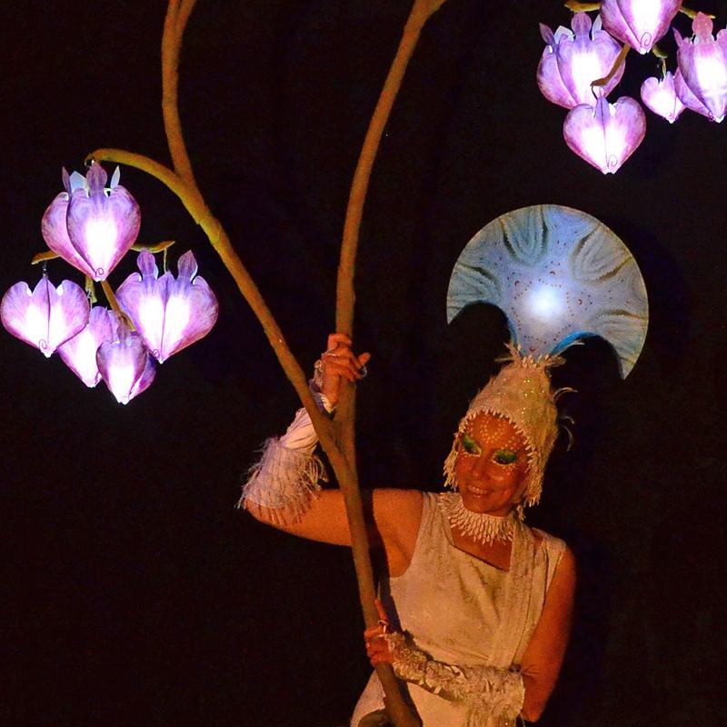 Leuchtende Pracht, Nacht-Veranstaltung