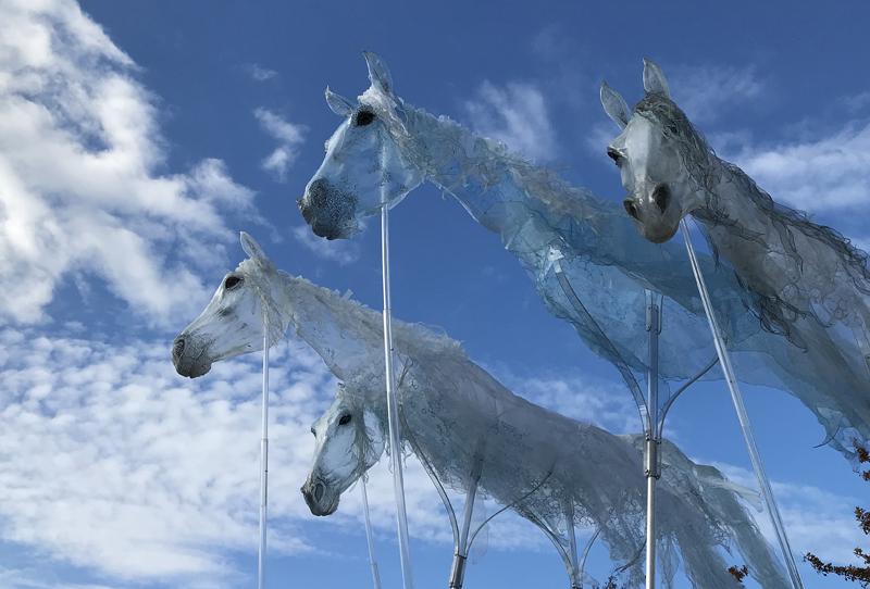 Luftwesen, Windpferde, Luft Walkact, Pferdeshow, Horseshow, Spectacle de chevaux, Pferde Walking Act, Horse Walking act