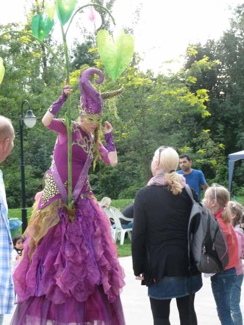 Waldlichträgerin pantao, Traumfee mit Wunschbaum, Tropennacht Zoopark Erfurt