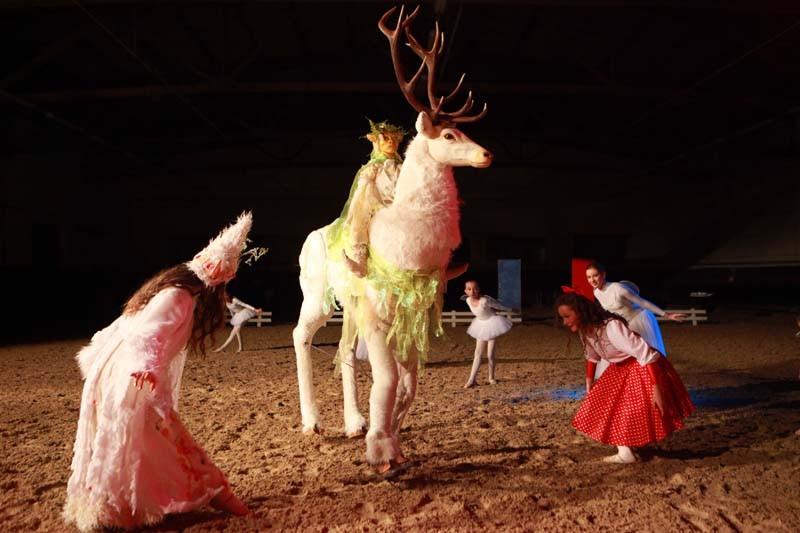Weißer Hirsch und Tänzerinnen, Pferdeshow Aachen, Pantao Weihnachtsmärchen